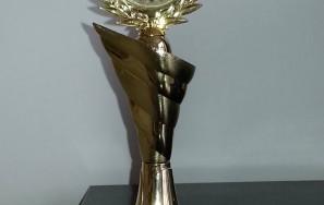 "IFWSA Excelence Awards Romania 2014 ""Luxury Aesthetics Center"""